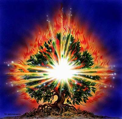 Moses And The Burning Bush Events From First Biblical Proof